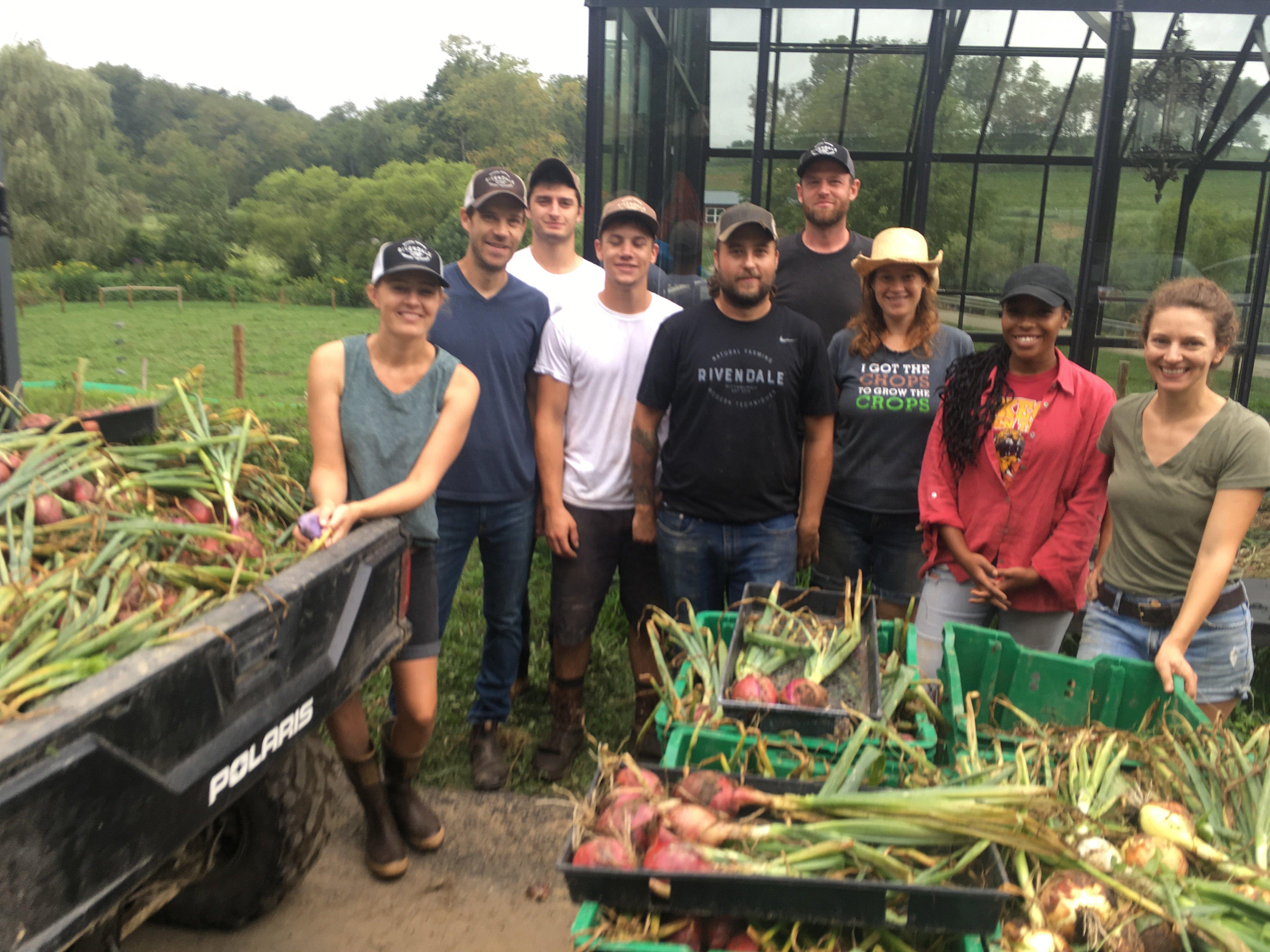 Rivendale Farms CSA Newsletter, Week 10 (August 14)