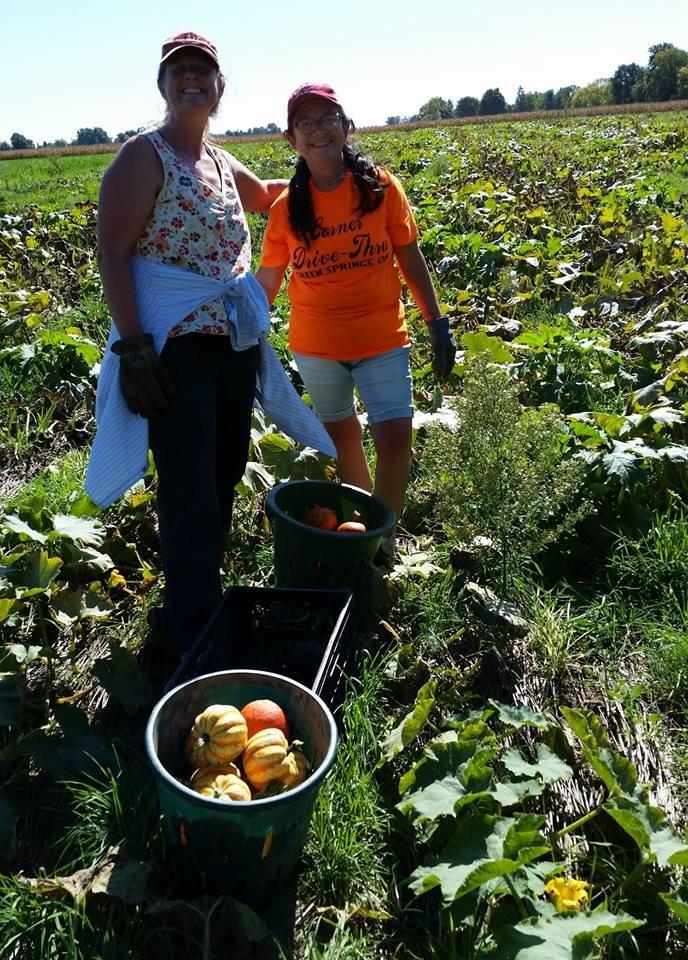 Riehm's Farm Happenings (Week 15)