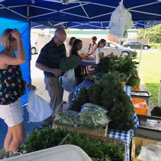 Previous Happening: Farm Happenings for October 17, 2018: FINAL Summer CSA Pick Up!