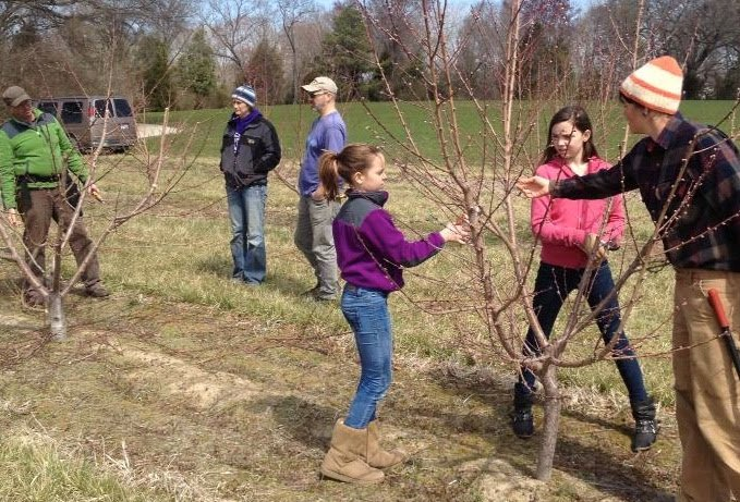 Farm Visit, Spring Pruning Demonstration