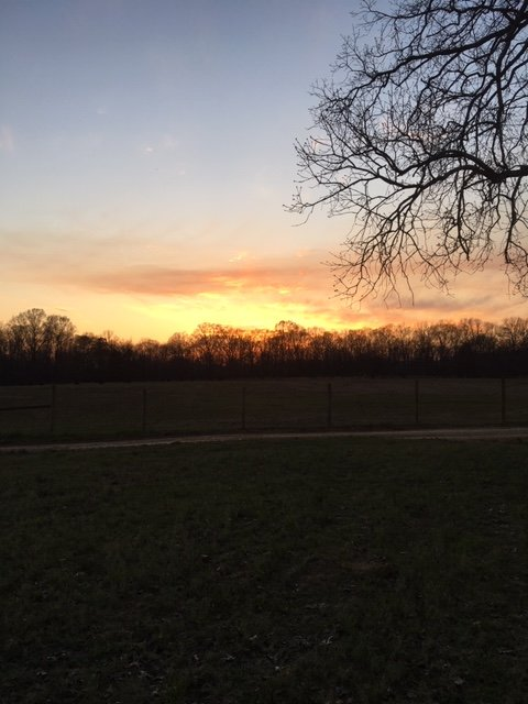 Farm Happenings for March 25, 2019