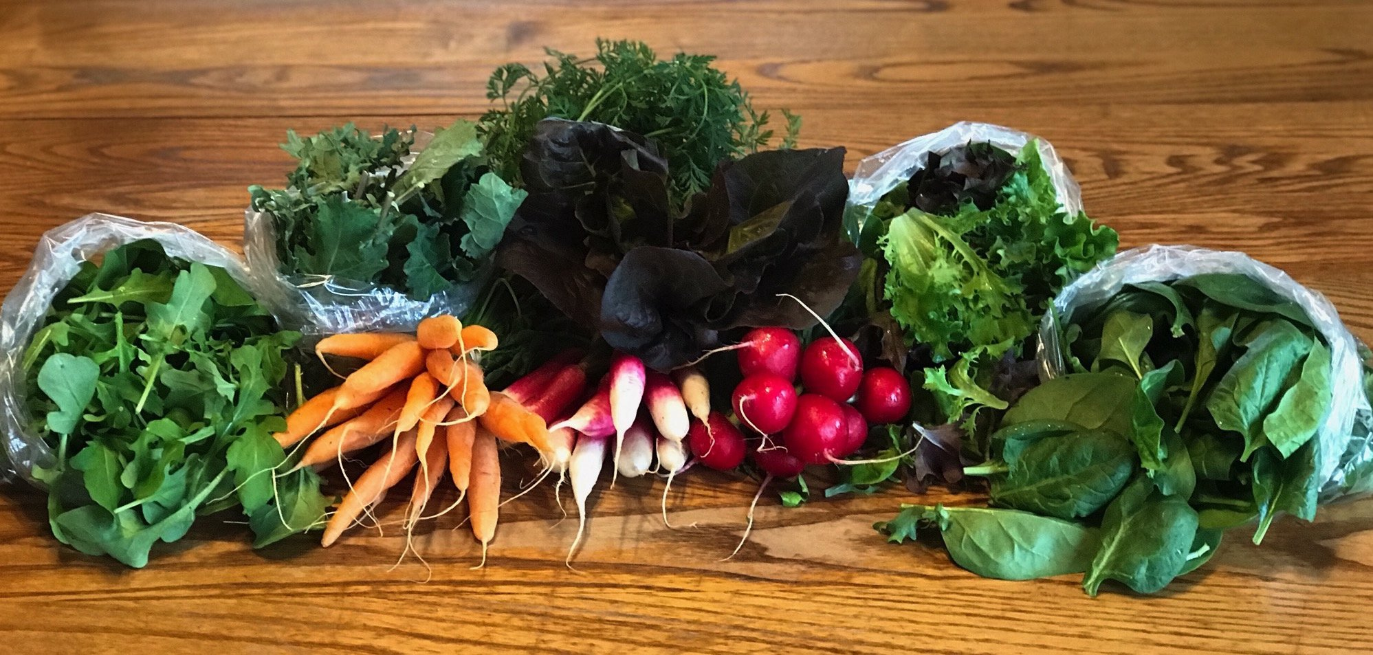 Spring/Summer CSA ~ Week 1 of 22
