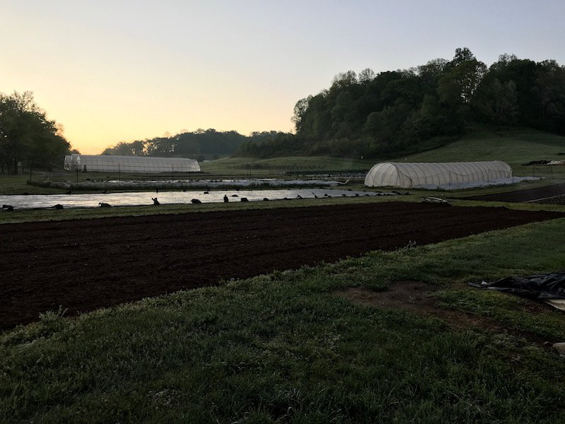 Farm Happenings for April 25, 2019