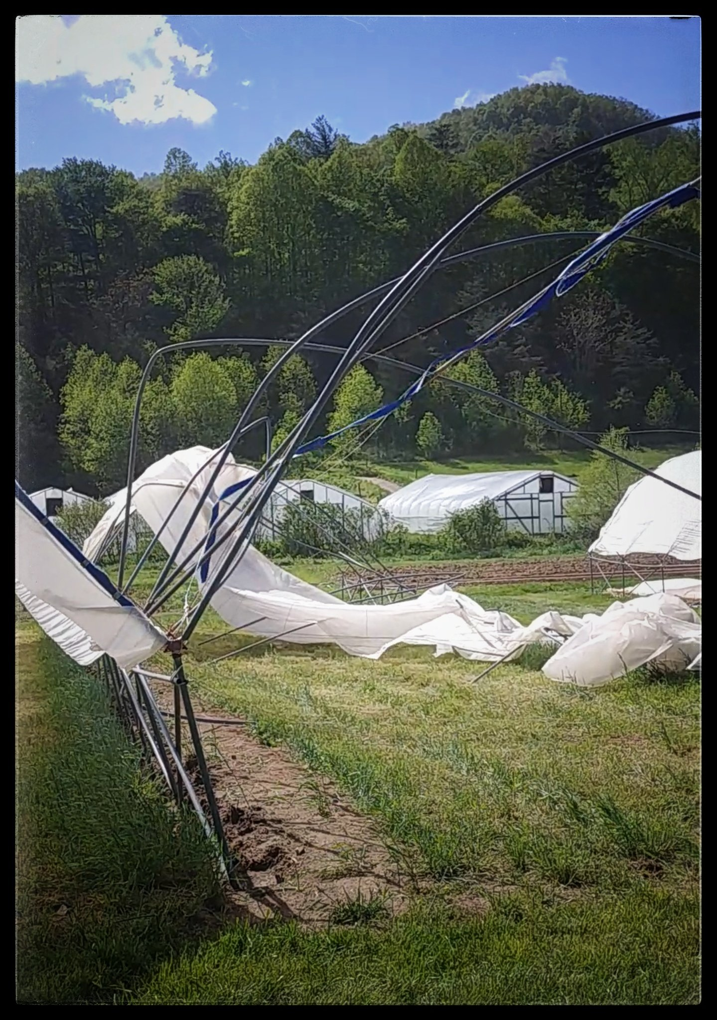 Farm Happenings for May 7, 2019