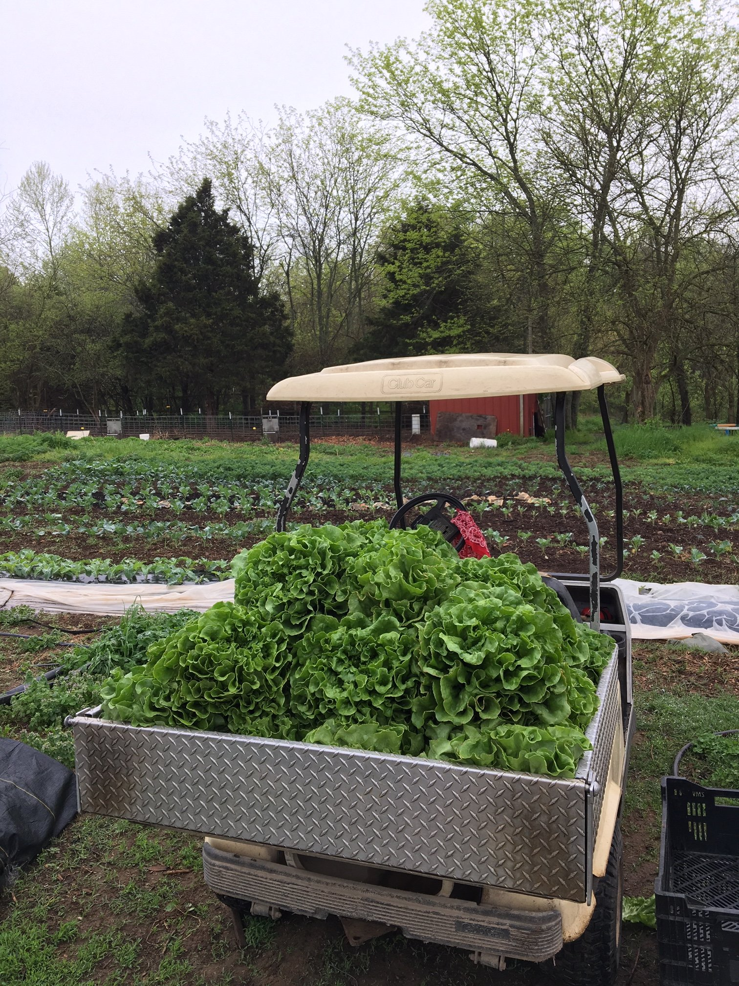 Dinner on the Farm! for May 7, 2019