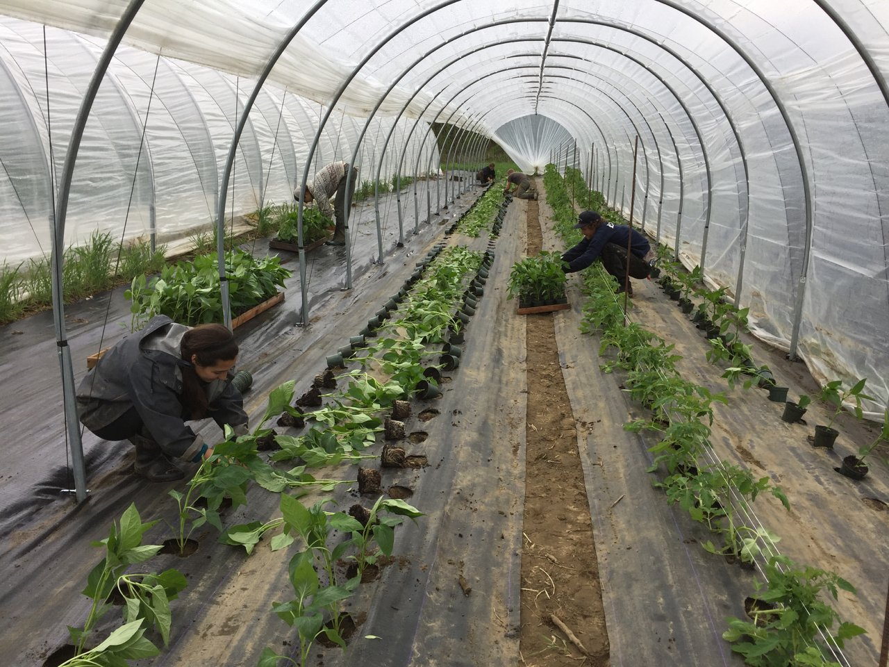Farm Happenings for May 14, 2019
