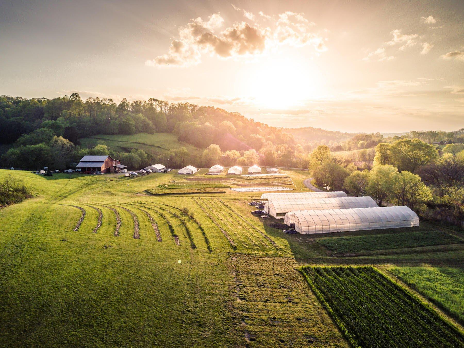Farm Happenings for June 4, 2019