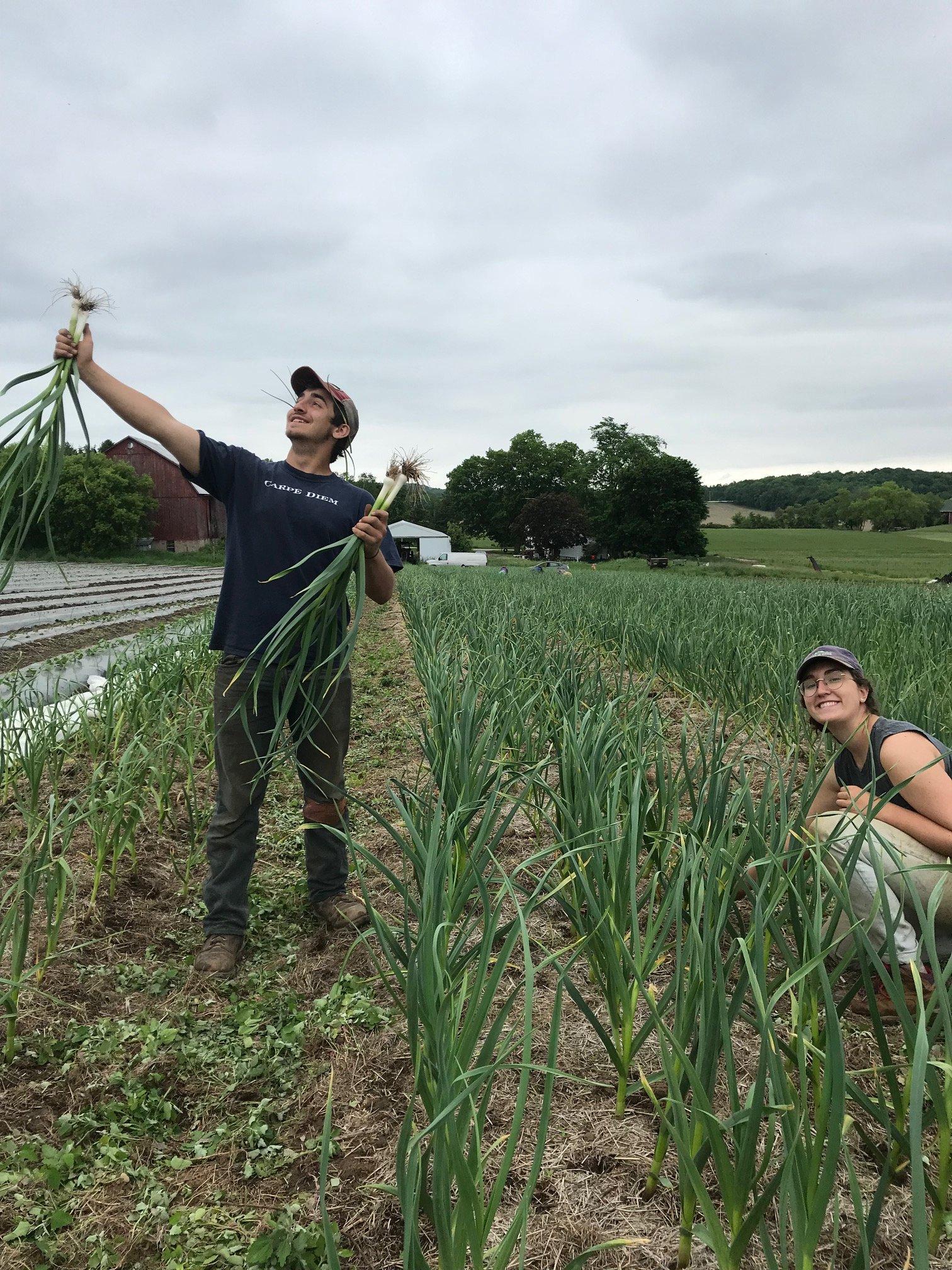 Farm Happenings for June 19, 2019