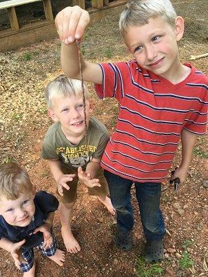 Boys on the Farm