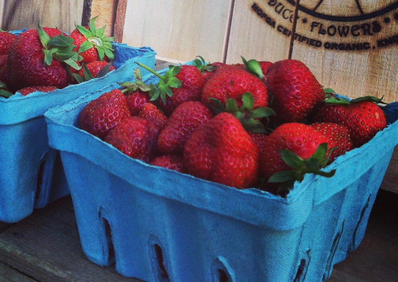 Farm Happenings for June 24th