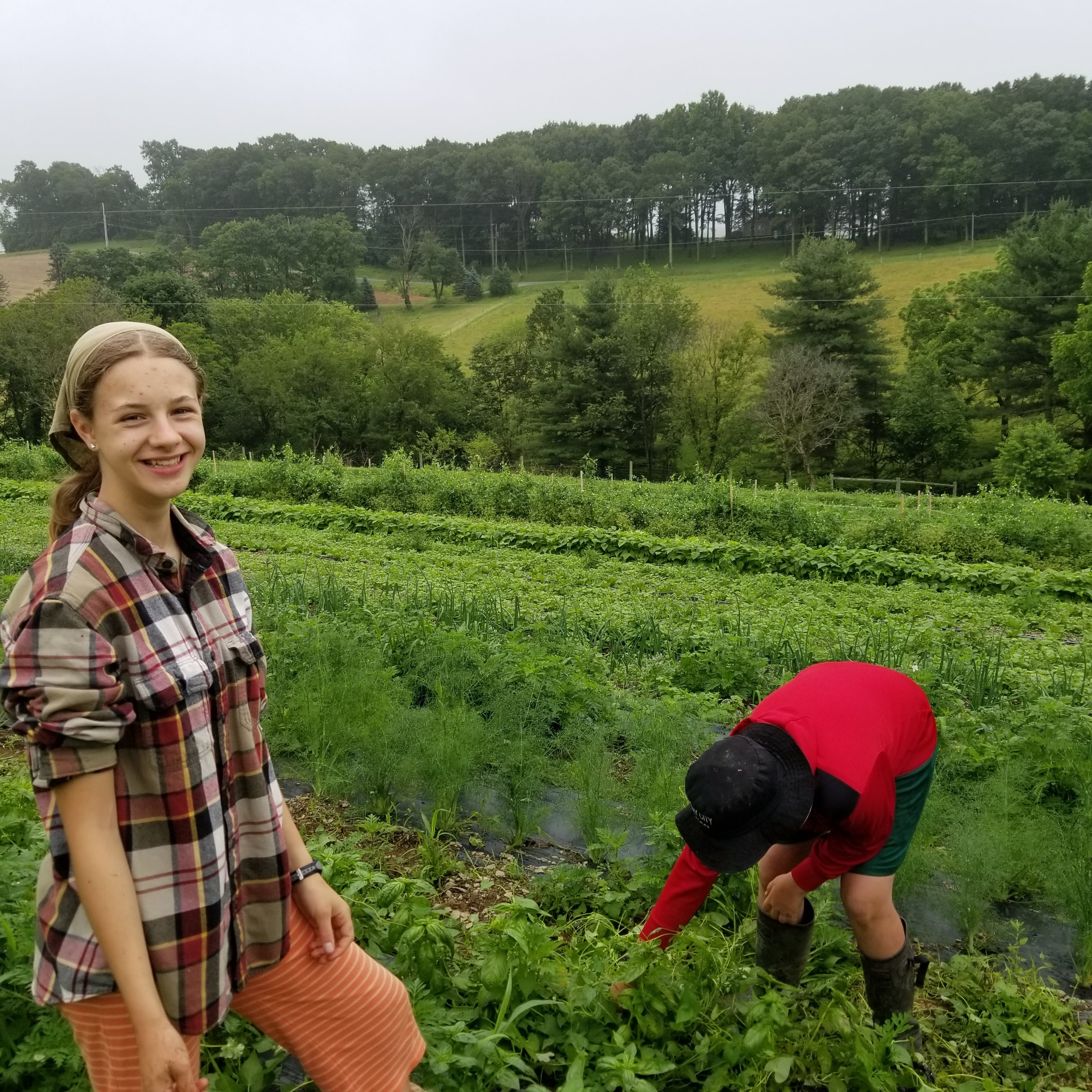 Farm challenges near and far