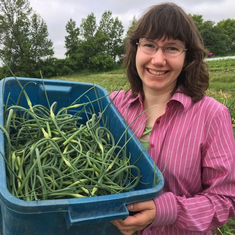 Garlic Scape Season & Compostable Bags Update