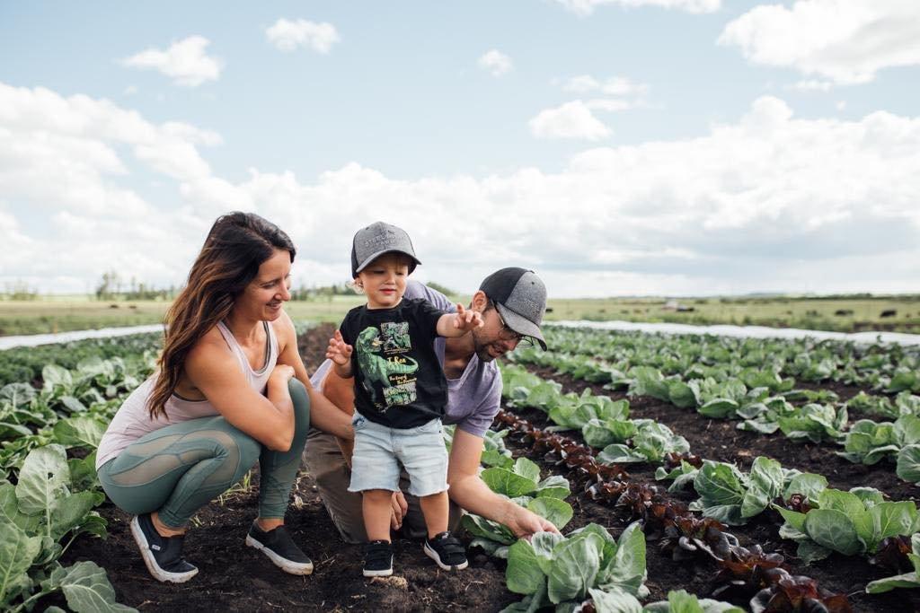 July 9 - Farm Happenings