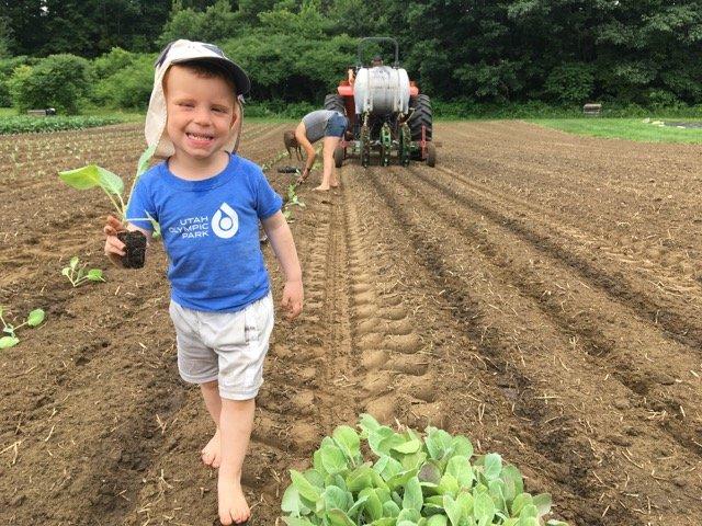 Previous Happening: Planting fall crops