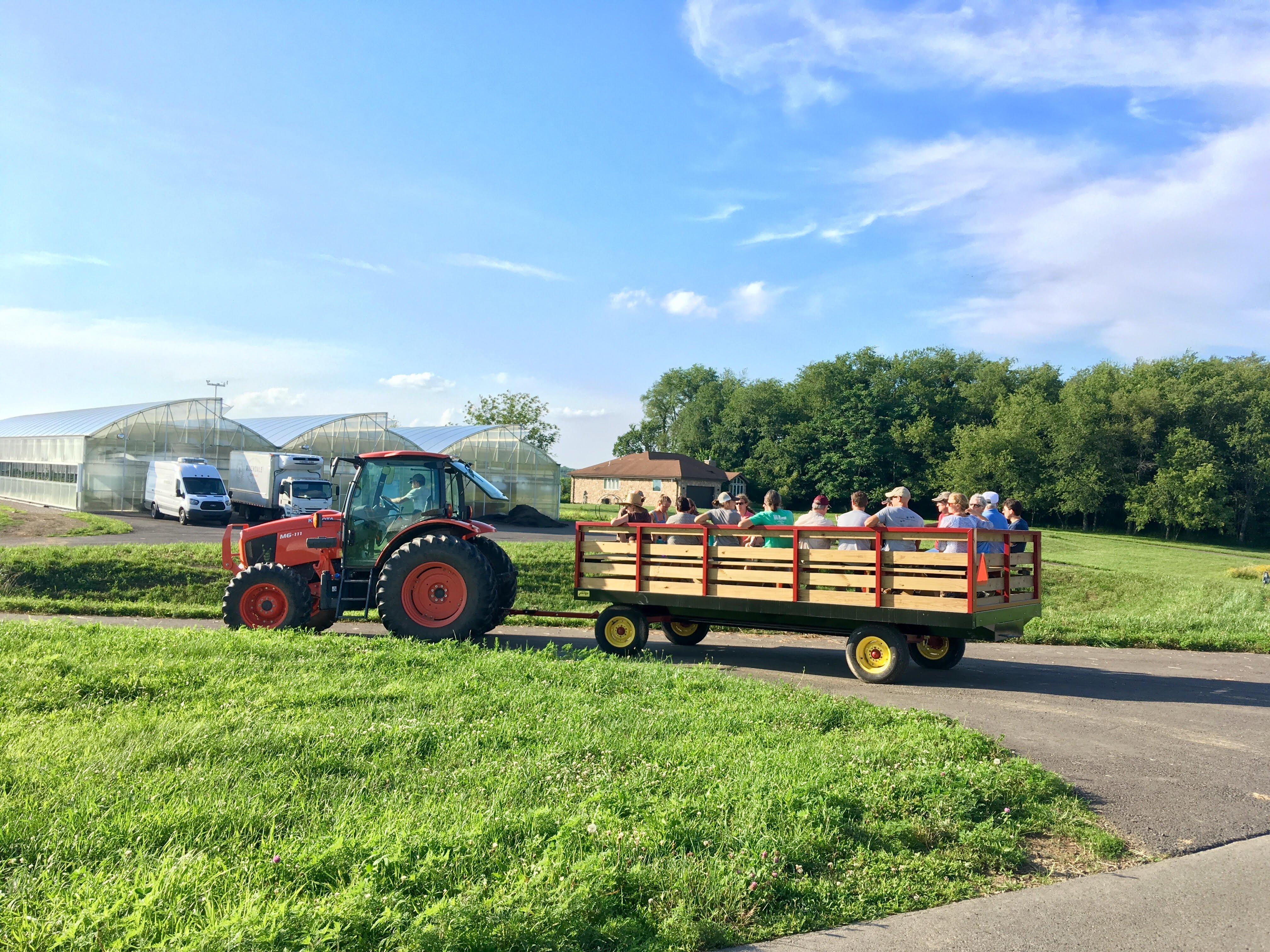 Farm Happenings for July 23, 2019 (week 7)