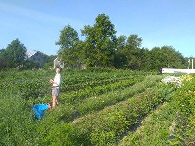 Farm Happenings for July 23, 2019