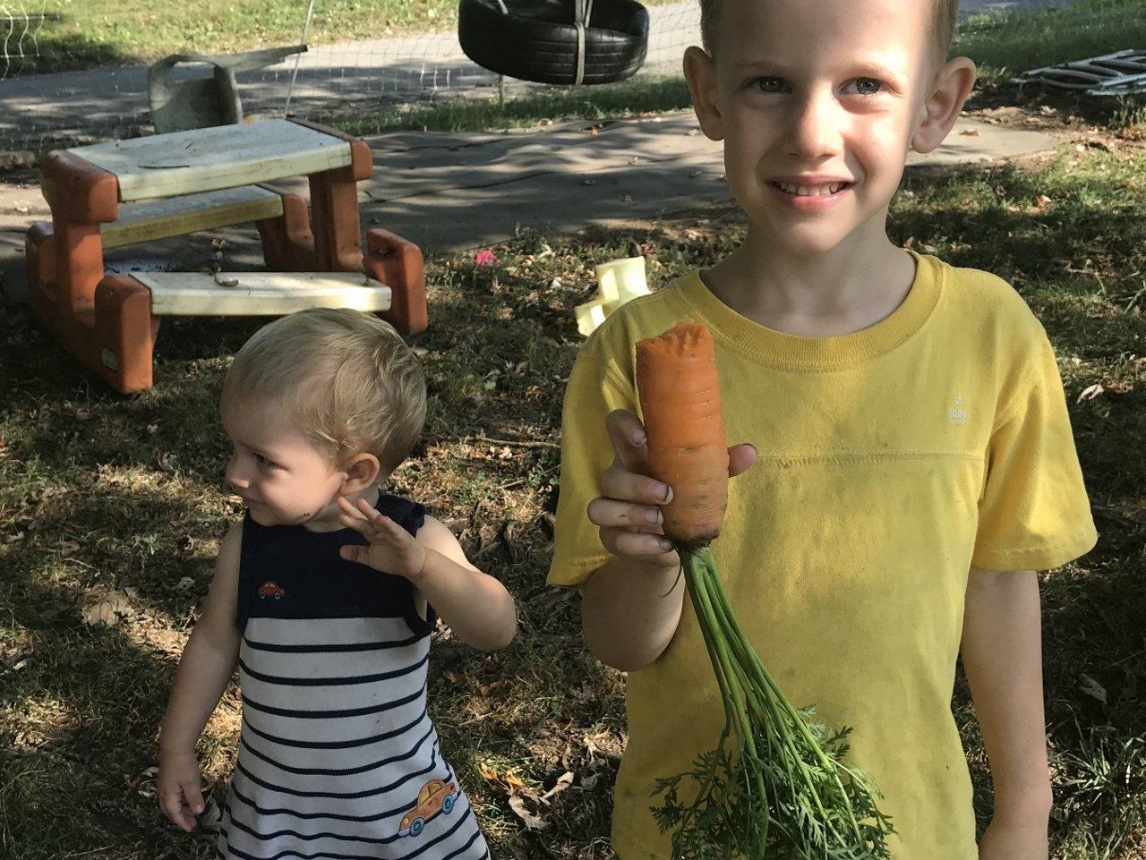 Carrots Finally!