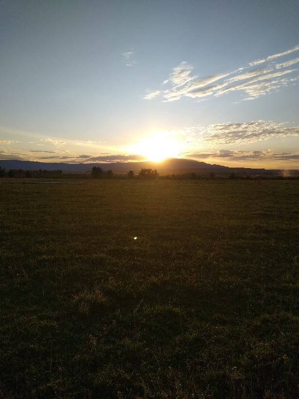 Fall Farm Shares Week #1