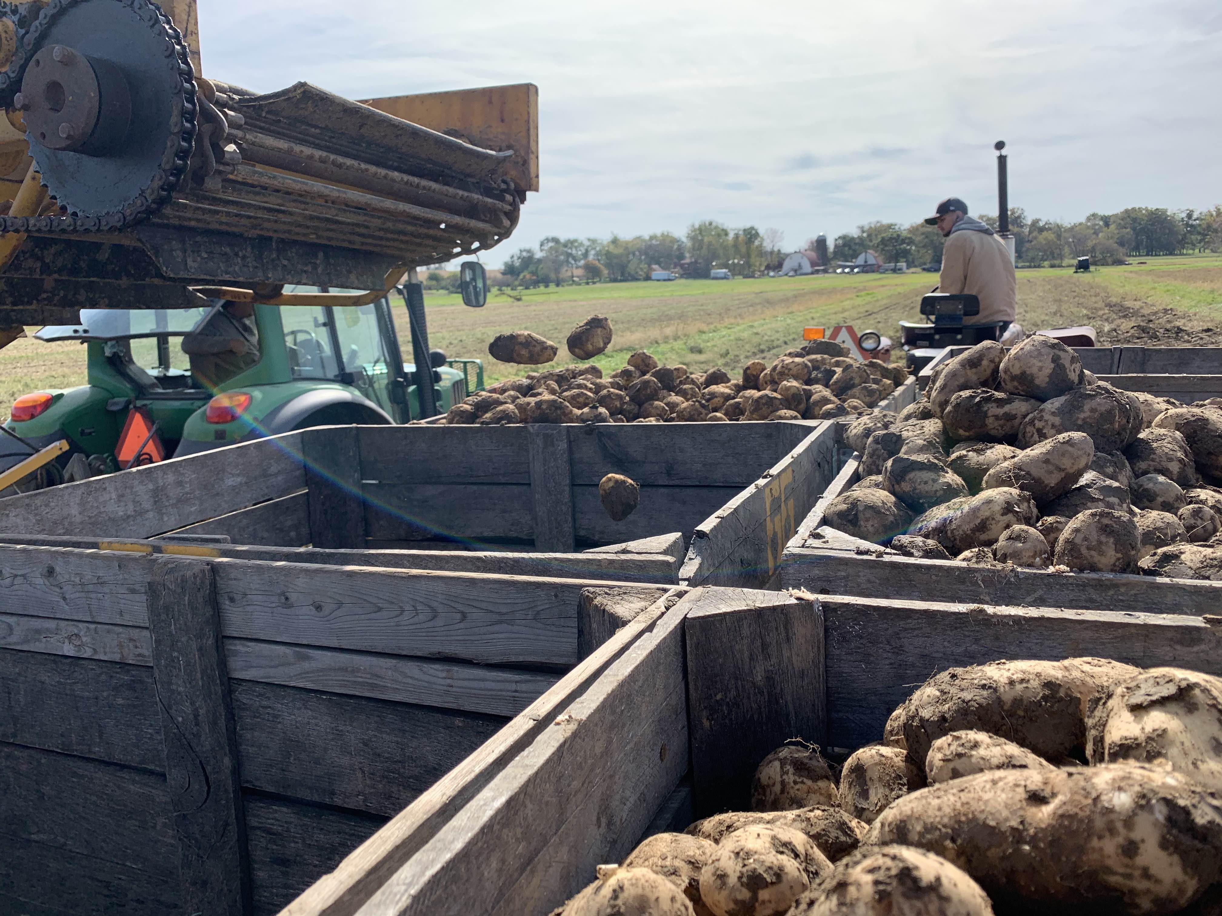 Week 16 Farm News Coming Soon