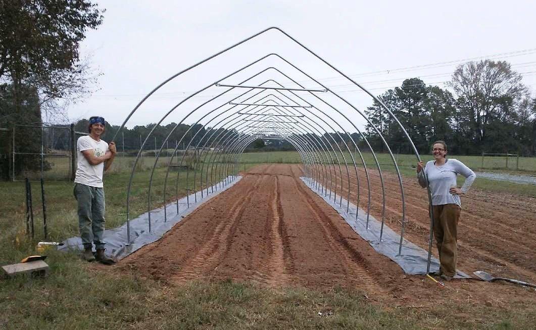 Farm Happenings for 2nd week of November