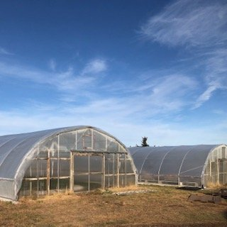 Farm Happenings for November 20, 2019: Week 8 out of 12!