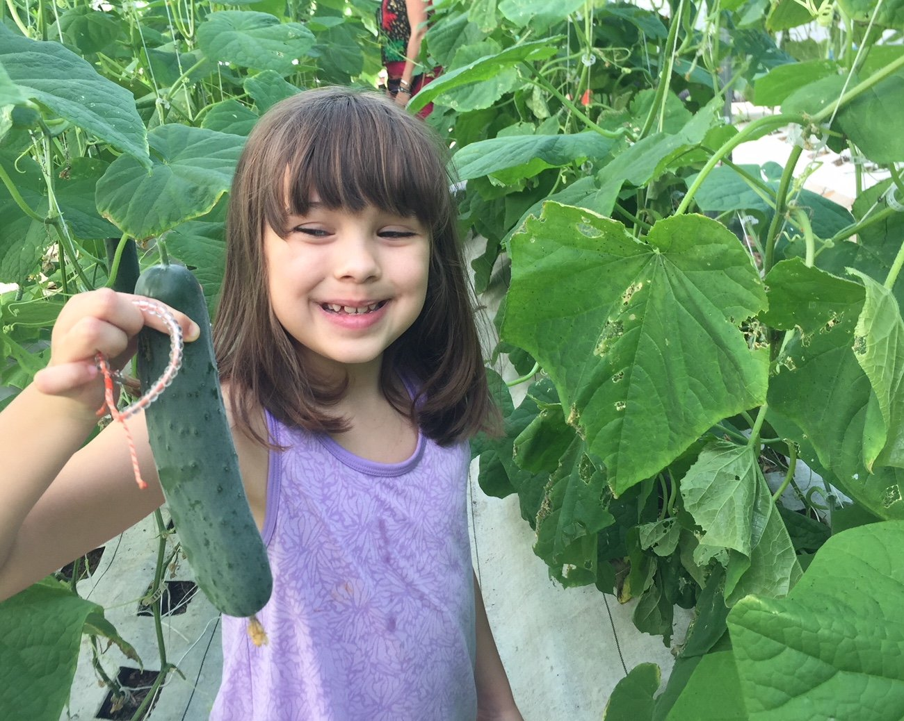 Rains and Growing Love: Your Farm Share for January 18, 2020