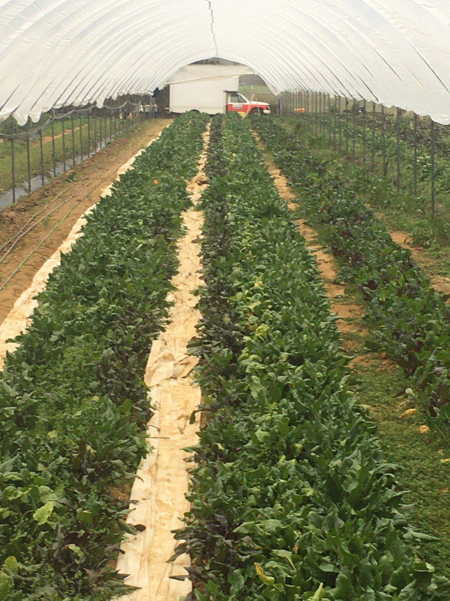 Next Happening: Farm Happenings for February 24, 2020