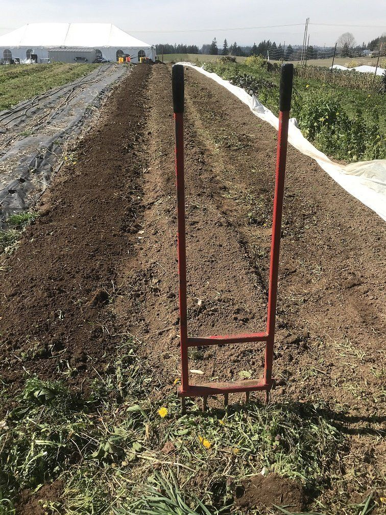 Farm Happenings for March 27, 2020