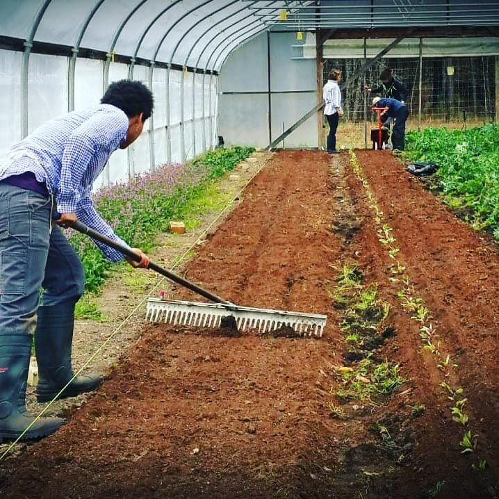 Farm Happenings for April 4, 2020