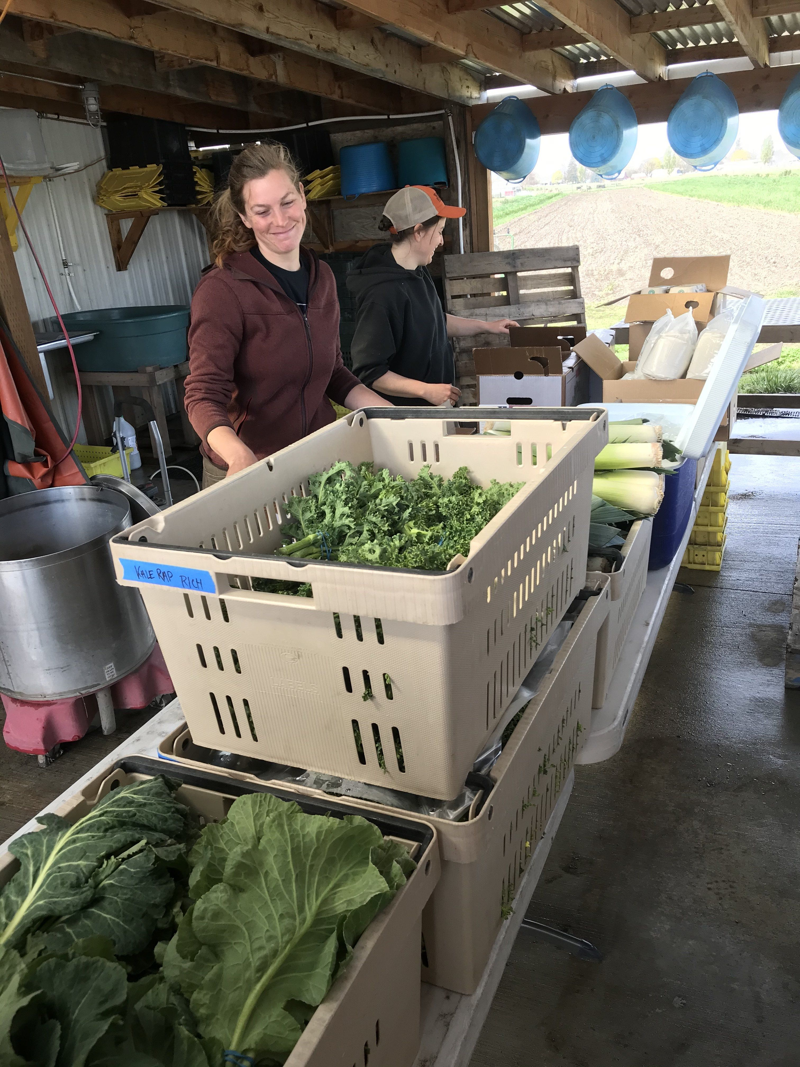 Farm Happenings for April 14, 2020 (Richland)