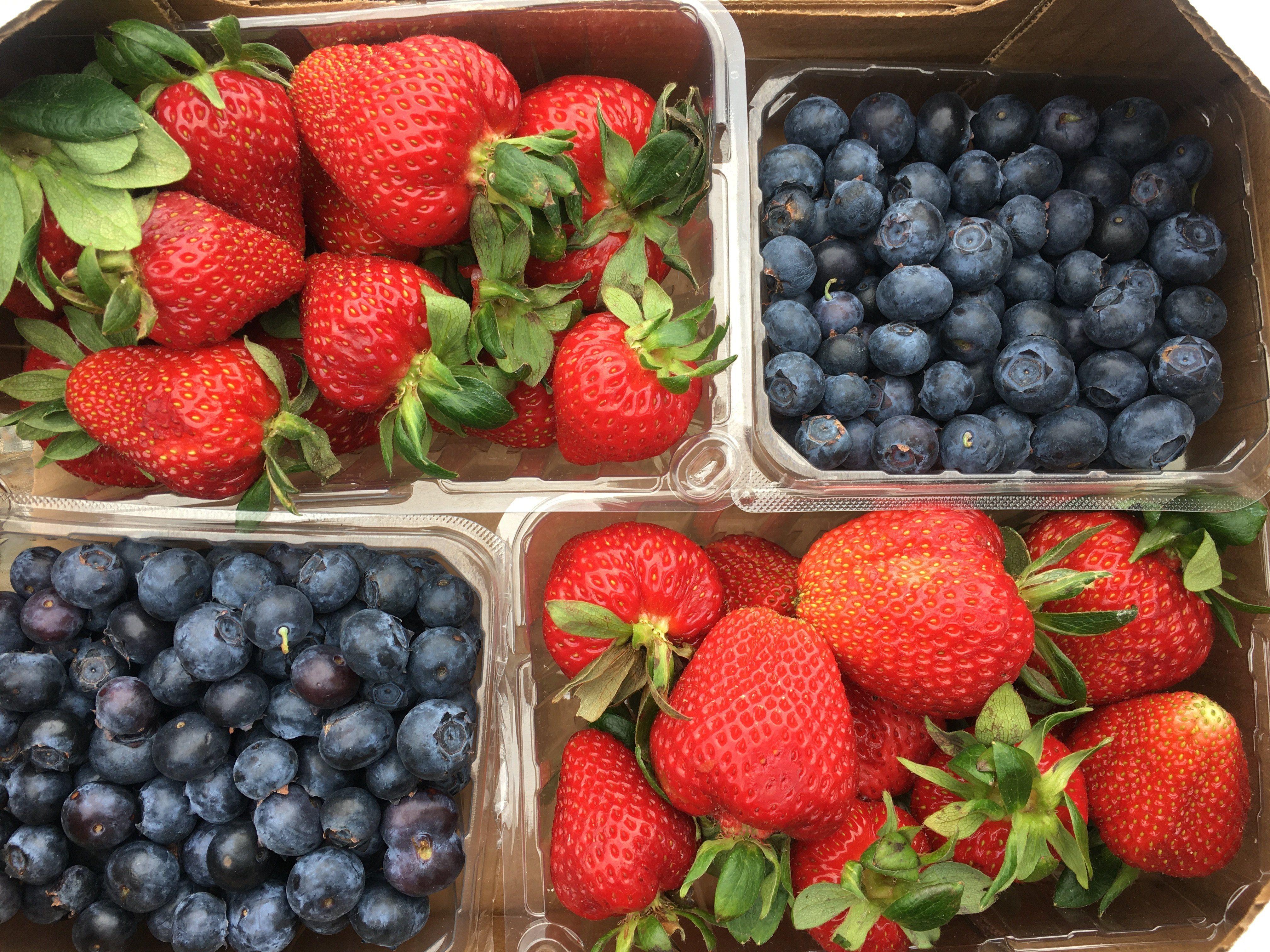 Regional Berry Farm Realities... Yes, Mold Happens