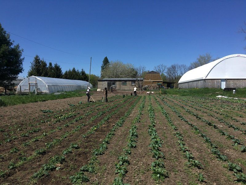Next Happening: Farm Happenings for May 28, 2020