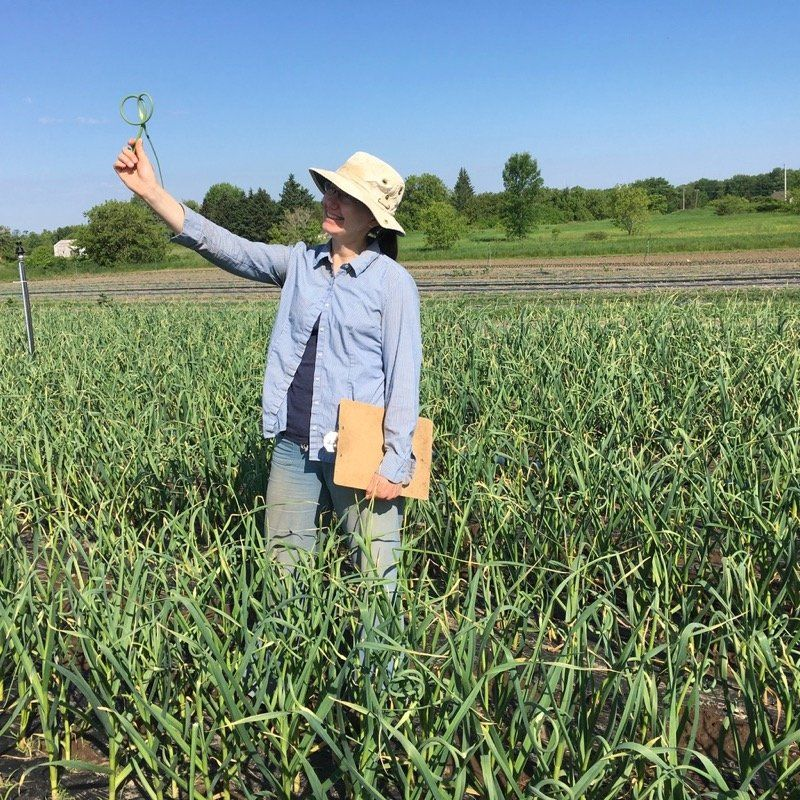 Field walks and first shares of the summer