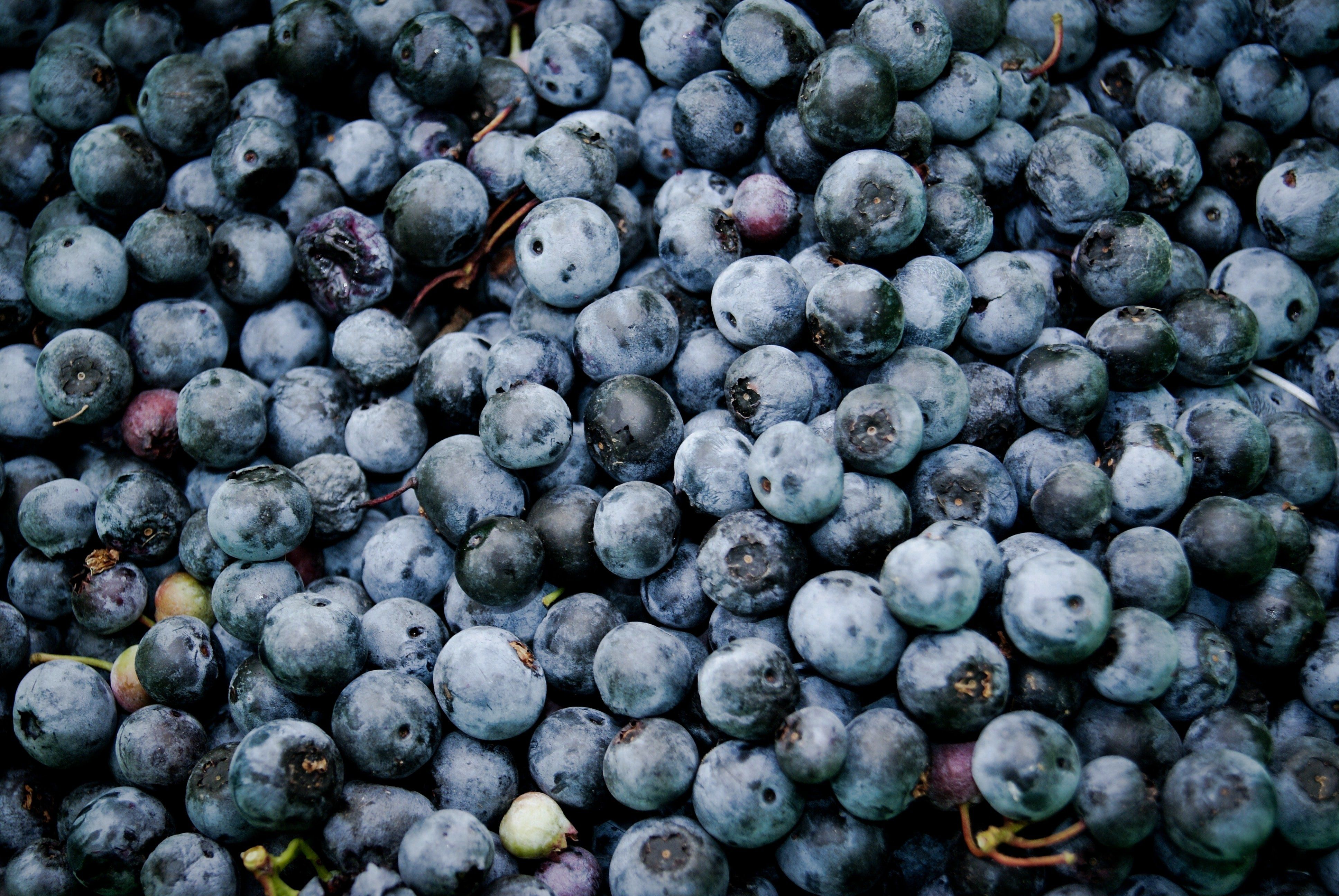 Next Happening: Upick and we pick; we all pick BLUEBERRIES