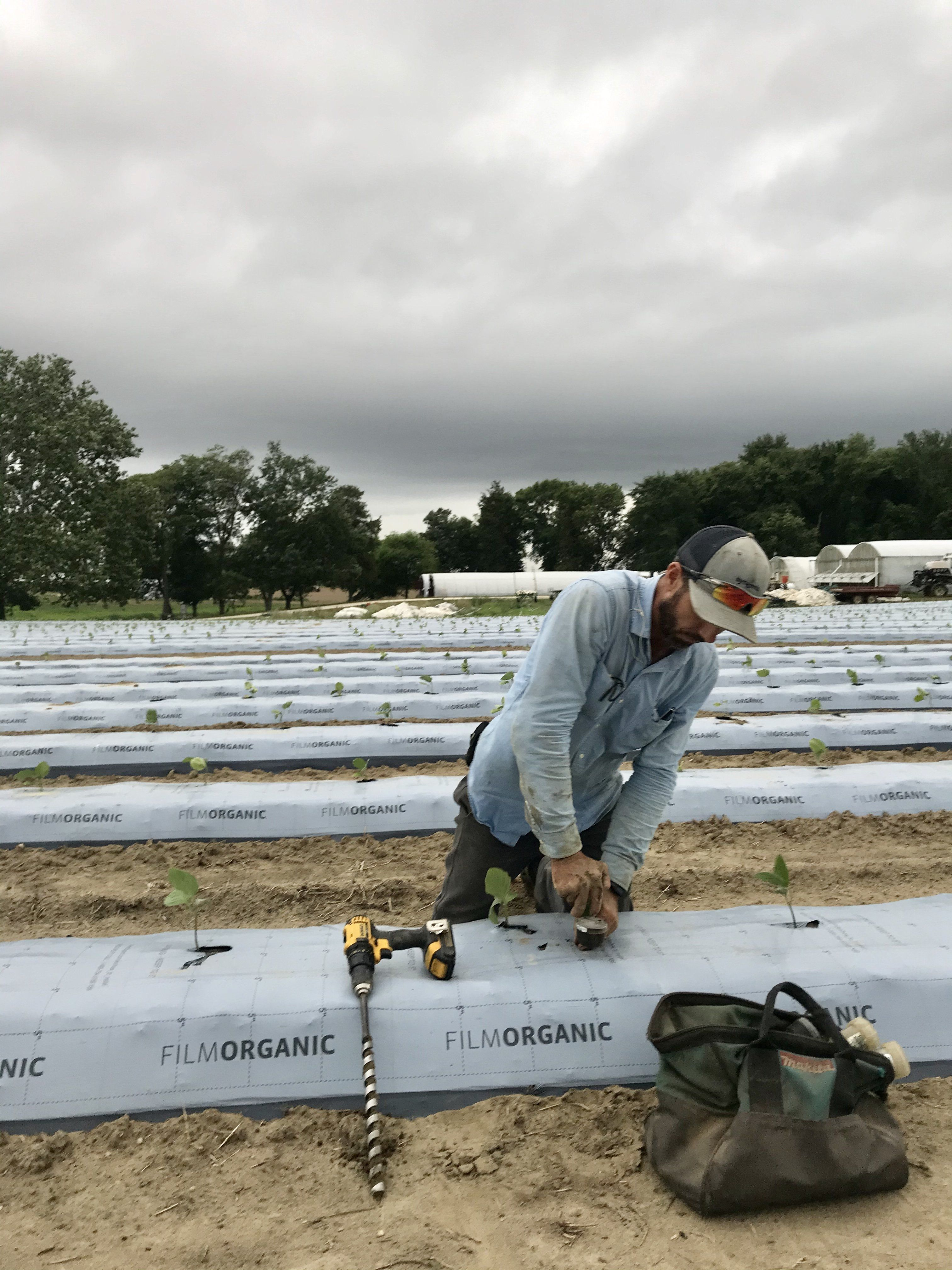Previous Happening: Farm Happenings for July 13, 2020