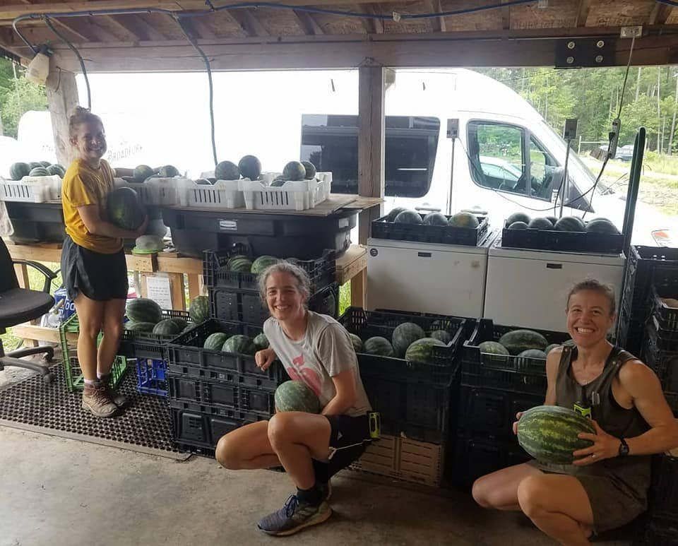 Previous Happening: Farm Happenings for July 25, 2020