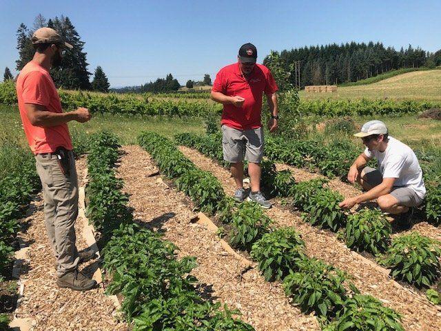Farm Happenings for July 30, 2020