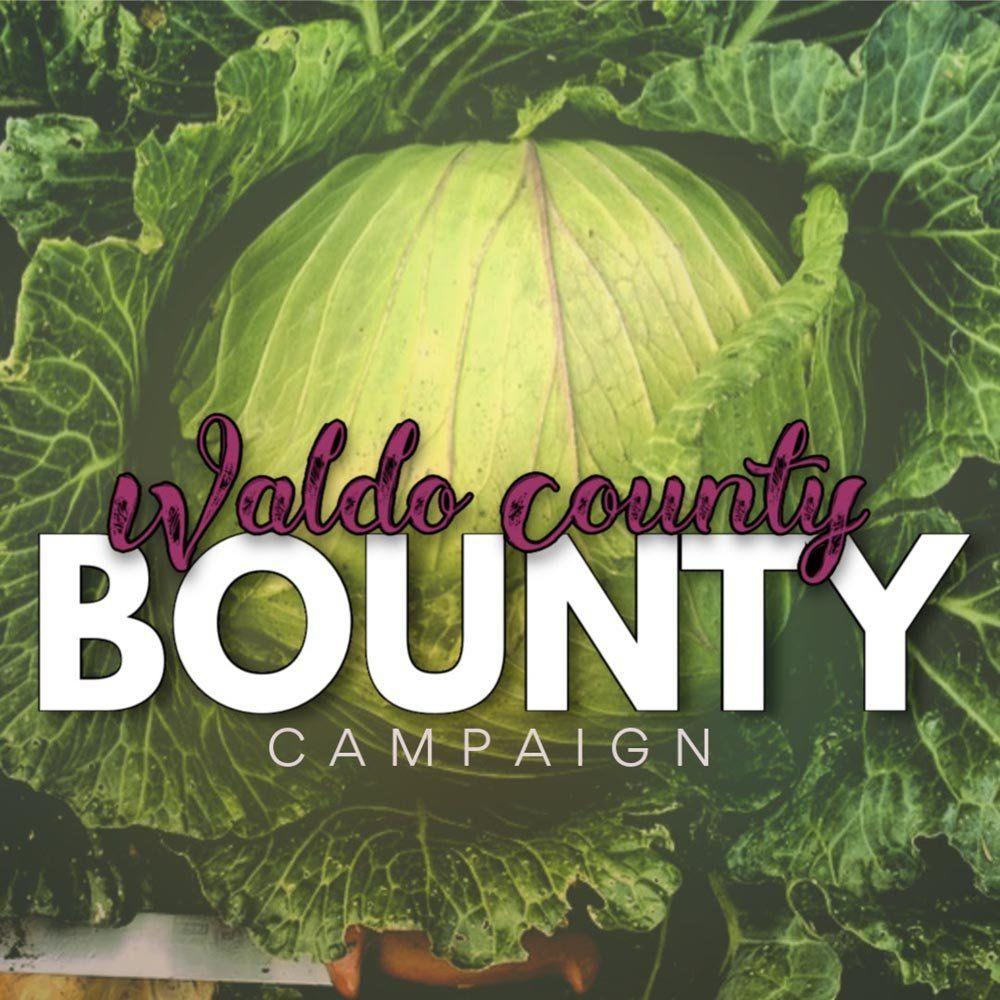 Farm Happenings for 8/4/2020: Salsa ingredients this week! & Waldo County Bounty Campaign