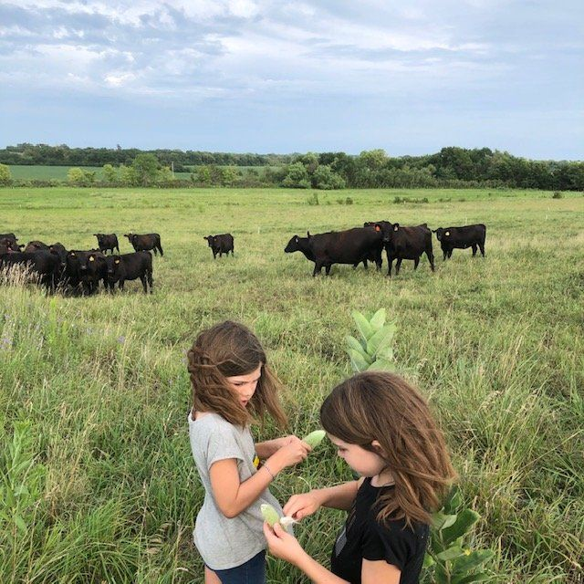 Next Happening: Online Farm Stand: August 5 & 6, 2020