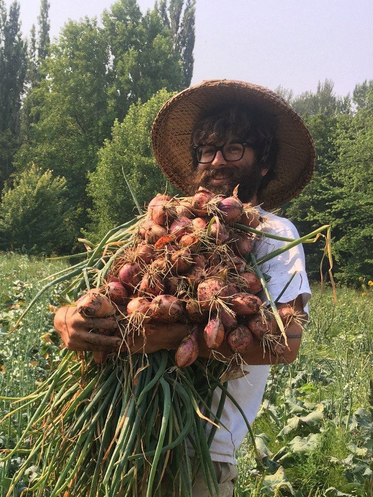 Next Happening: Farm Happenings for August 5, 2020