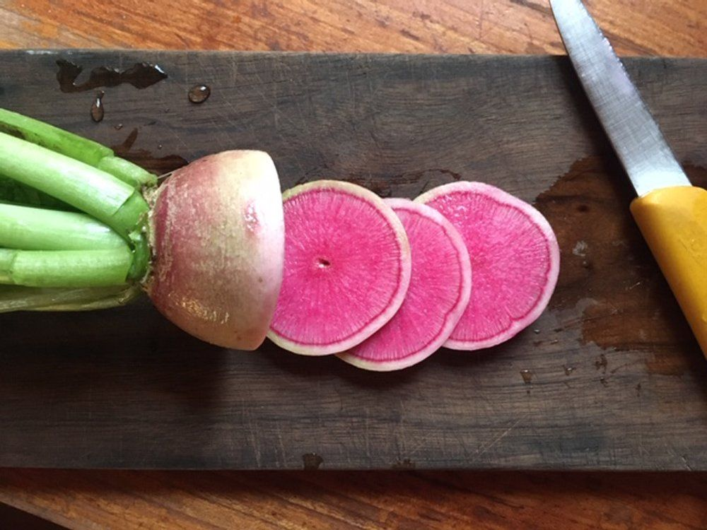 Farm Happenings for 8/11/2020: More Summer Goodness & Update from Villageside Farm