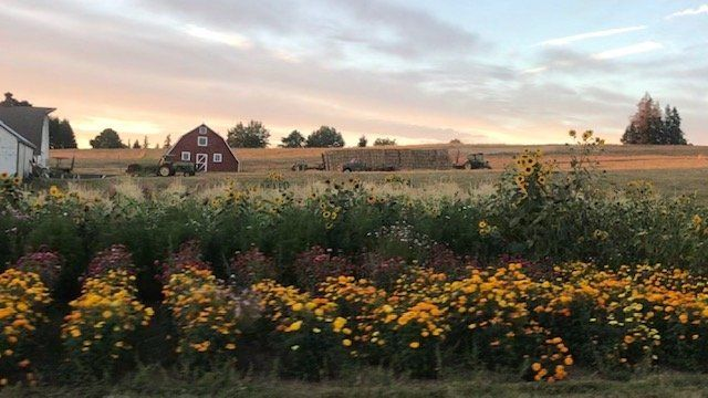 Farm Happenings for August, 23 2020