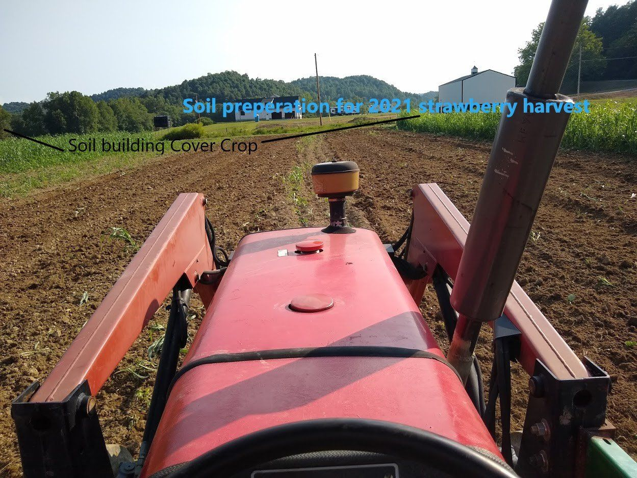 Previous Happening: Farm Happenings for September 1, 2020