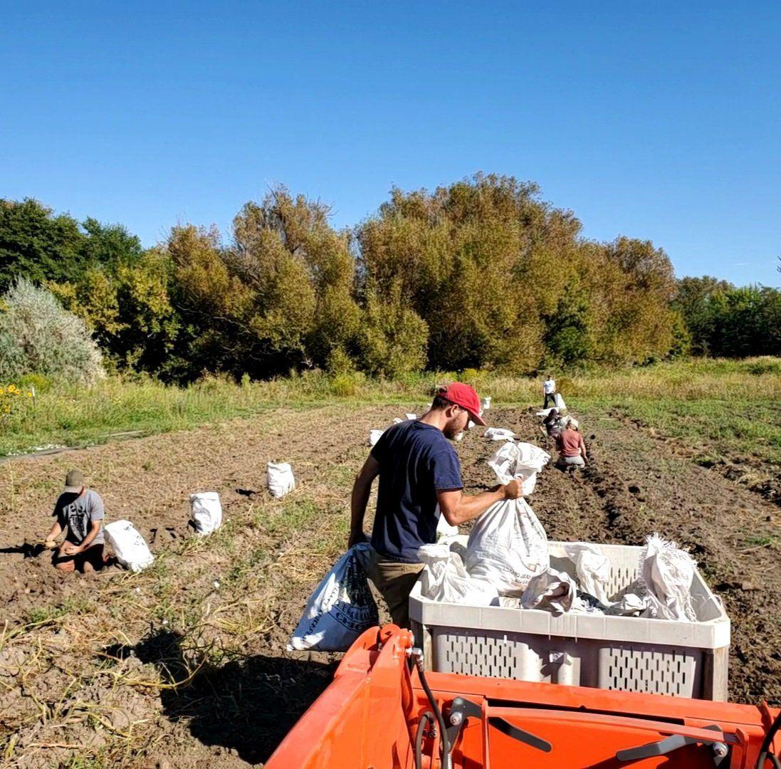 Previous Happening: Farm Happenings for September 8, 2020