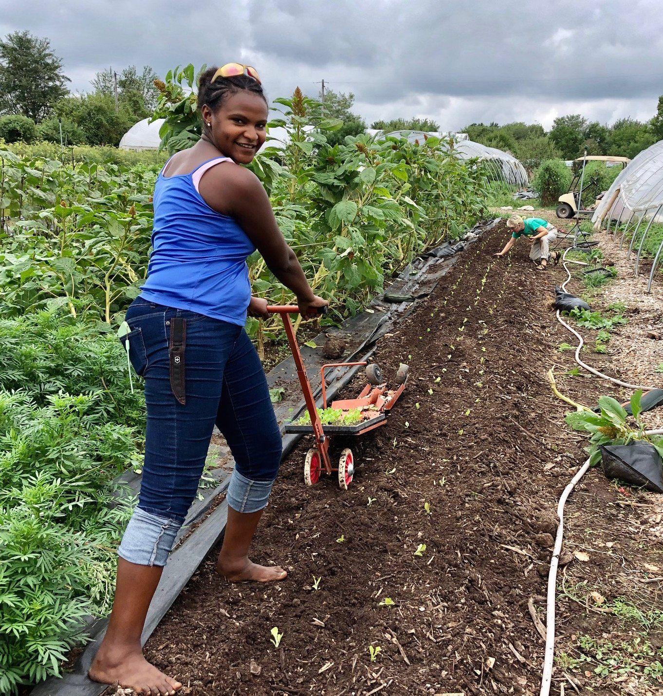 Farm Happenings for September 15, 2020