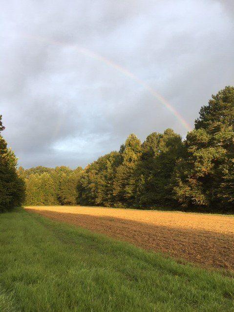 Previous Happening: Farm Happenings for September 15, 2020