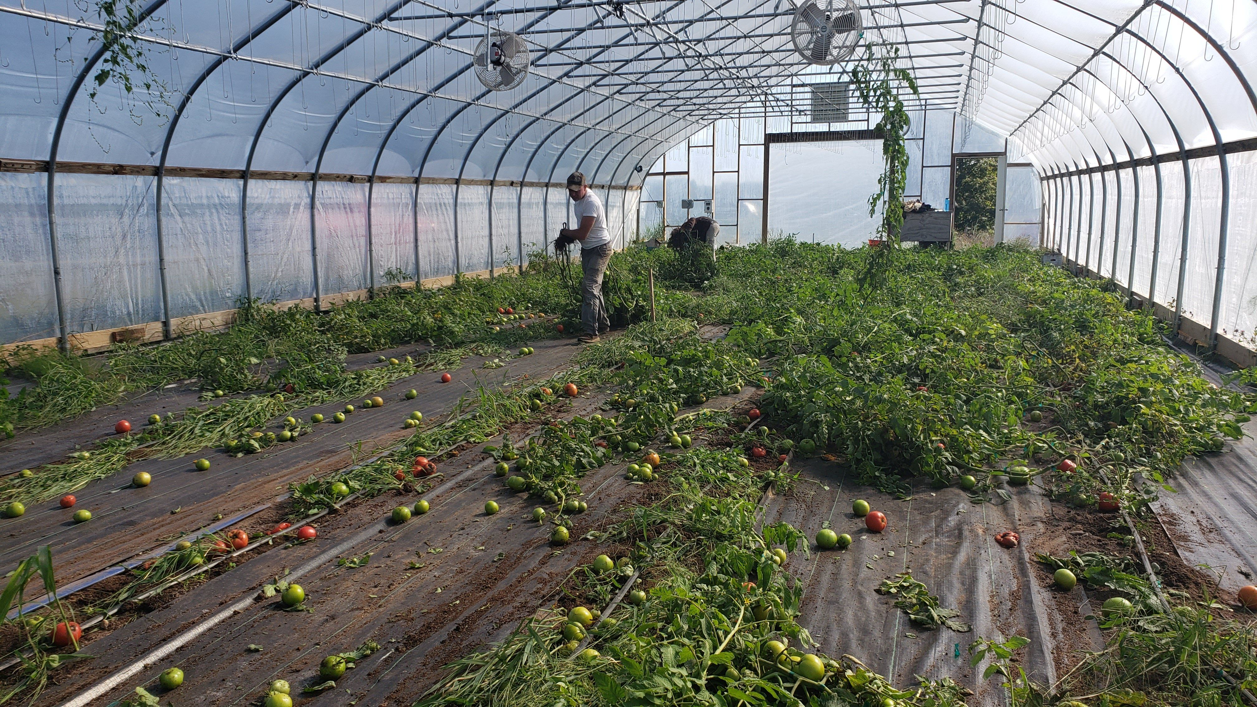 Farm Happenings for Week of September 22, 2020