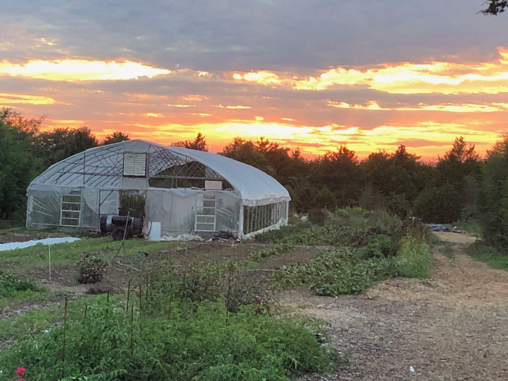 Farm Happenings for September 25, 2020