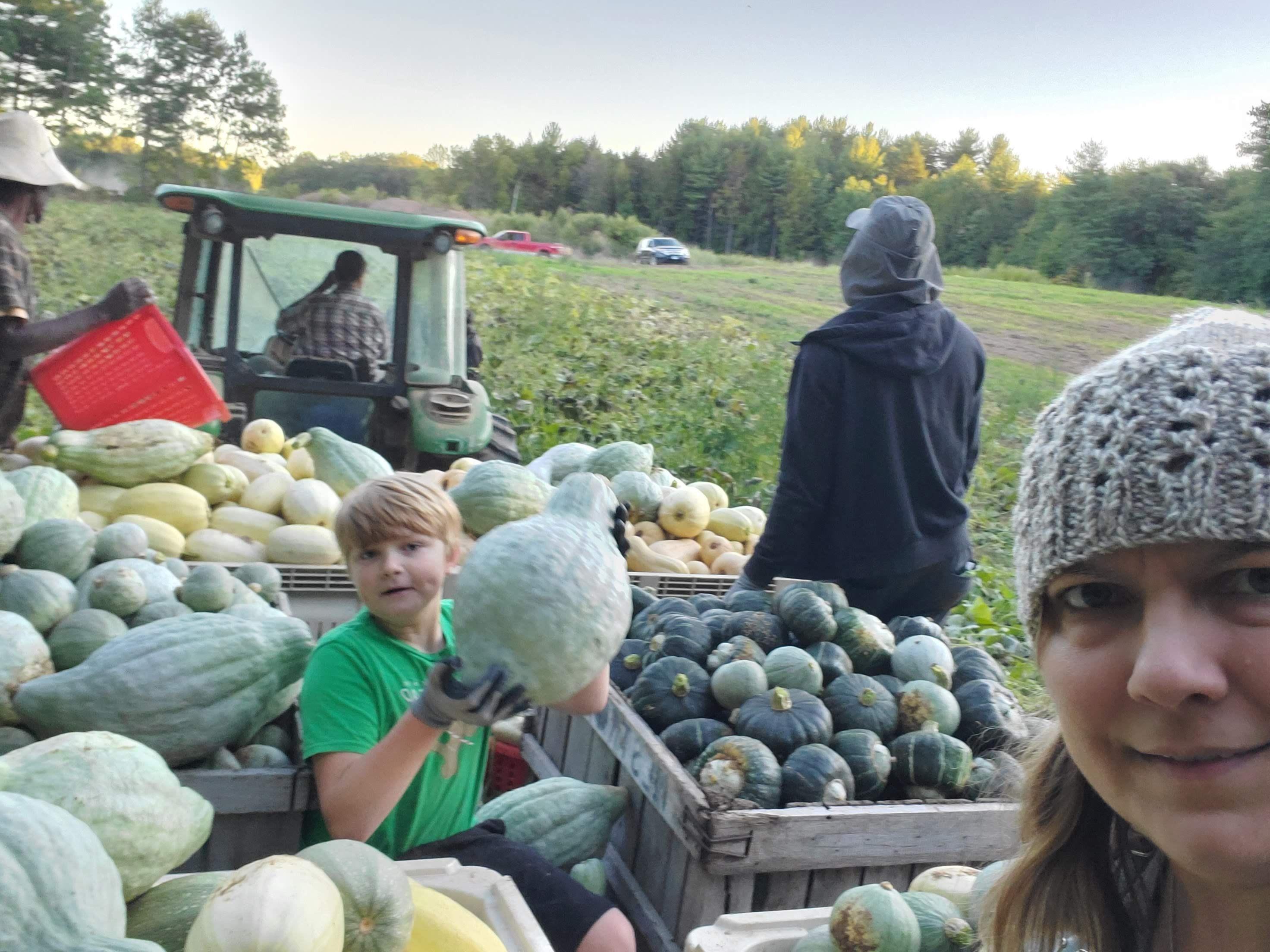 Previous Happening: Oxen Hill Farm Summer 2020 CSA Season Week 15! (week of September 28)