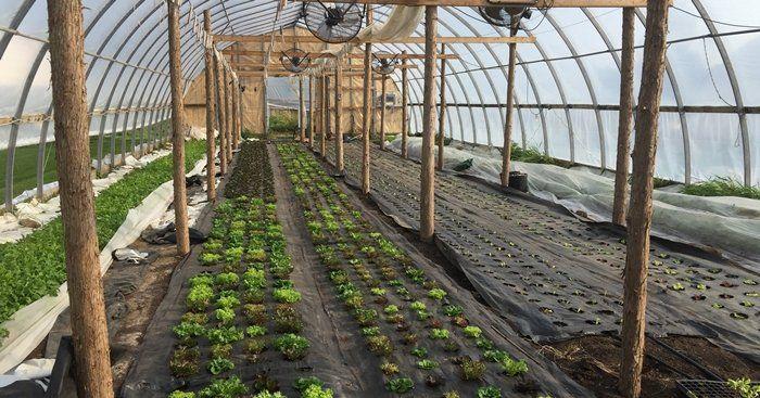 Farm Happenings for Sep 26, 2020